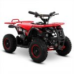 Children's Electric Quad Bikes - First Hand Experience